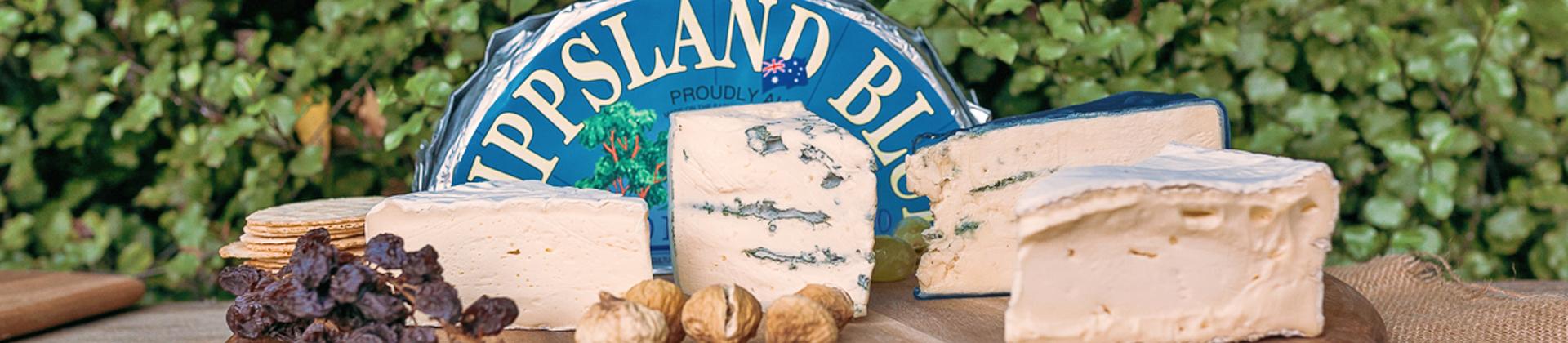 7a-gippsland-cheese-hero